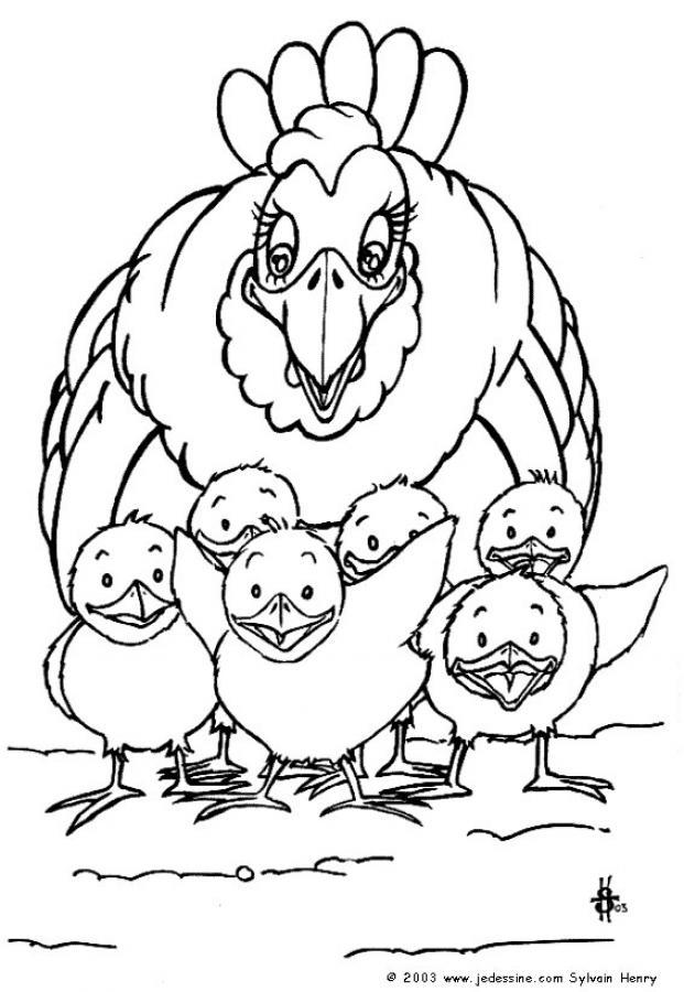 Dibujos para colorear gallina con sus pollitos - es.hellokids.com