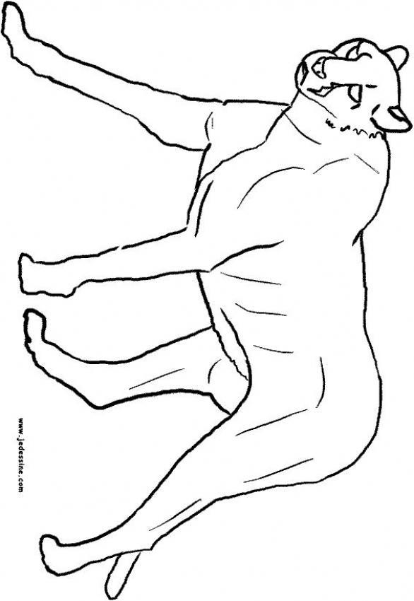 Dibujos para colorear una pantera - es.hellokids.com