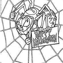 Dibujo para colorear : Araña en su telaraña