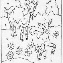 Juego de pintar CABRAS - Juegos divertidos - Juegos para IMPRIMIR - Juegos de PINTAR - Juegos de pintar ANIMALES - Juegos de colorear ANIMALES