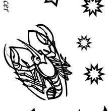 Cancer - Dibujos para Colorear y Pintar - Dibujos infantiles para colorear - Signos del Zodiaco para colorear