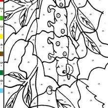 Juego de pintar ORUGA - Juegos divertidos - Juegos para IMPRIMIR - Juegos de PINTAR - Juegos de pintar ANIMALES - Juegos de pintar INSECTOS
