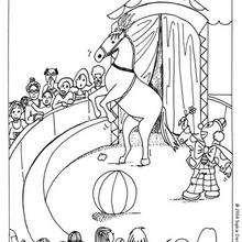 Dibujo caballo y payaso - Dibujos para Colorear y Pintar - Dibujos infantiles para colorear - Circo para colorear