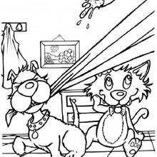 Perro y gato catastrofe - Dibujos para Colorear y Pintar - Dibujos para colorear ANIMALES - Dibujos PERROS para colorear - Dibujos para colorear gratis PERROS