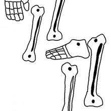 Plantilla CALAVERA articulada tobillos, manos y pies