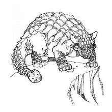 Dibujo para colorear : Anquilosaurio