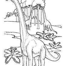 Dibujo para colorear : Brachiosaurios