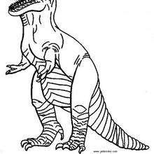 Dibujo para colorear : Dinosaurio Carnívoro