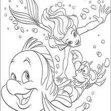 Dibujo para colorear : Flounder y Sebastián