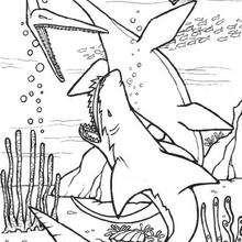 Dinosaurios marítimos - Dibujos para Colorear y Pintar - Dibujos para colorear ANIMALES - Dibujos para colorear DINOSAURIOS - Colorear DINOSAURIOS