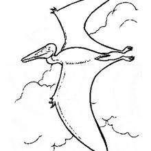 Dibujo dinosaurio volador - Dibujos para Colorear y Pintar - Dibujos para colorear ANIMALES - Dibujos para colorear DINOSAURIOS - Dibujos para colorear dinosaurio PTERODACTILO