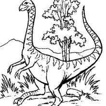Dinosaurio con pico de avestruz - Dibujos para Colorear y Pintar - Dibujos para colorear ANIMALES - Dibujos para colorear DINOSAURIOS - Colorear DINOSAURIOS