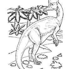 Dinosaurio con cresta - Dibujos para Colorear y Pintar - Dibujos para colorear ANIMALES - Dibujos para colorear DINOSAURIOS - Pintar DINOSAURIOS