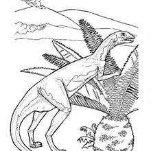 Dinosaurio dibujo - Dibujos para Colorear y Pintar - Dibujos para colorear ANIMALES - Dibujos para colorear DINOSAURIOS - Colorear DINOSAURIOS