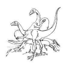 Dibujo para colorear : Ornitomimos