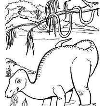 Dibujo dinosaurio comiendo hojas - Dibujos para Colorear y Pintar - Dibujos para colorear ANIMALES - Dibujos para colorear DINOSAURIOS - Pintar DINOSAURIOS