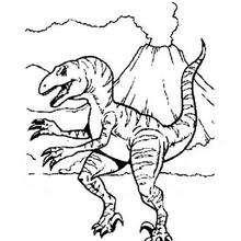 Dibujo Tirex - Dibujos para Colorear y Pintar - Dibujos para colorear ANIMALES - Dibujos para colorear DINOSAURIOS - Colorear dinosaurios TIREX
