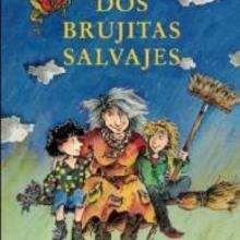 Dos brujitas salvajes - Lecturas Infantiles - Libros INFANTILES Y JUVENILES - Libros JUVENILES - Literatura juvenil