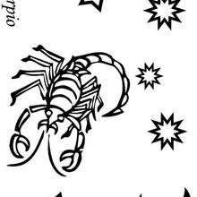 Dibujos Para Colorear Escorpio Eshellokidscom