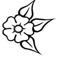 Flor N°25 - Dibujos para Colorear y Pintar - LA NATURALEZA: dibujos para colorear - Dibujos de FLORES para pintar