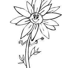 Flor N°3 - Dibujos para Colorear y Pintar - LA NATURALEZA: dibujos para colorear - Dibujos de FLORES para pintar