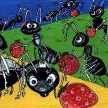 Hormigas - Dibujar Dibujos - Imagenes para niños - Imagenes ANIMALES