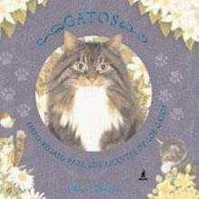 Libro : Gatos