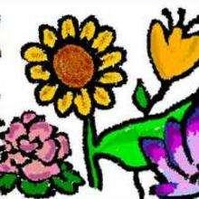 Ilustración : Jardín secreto