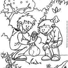 Dibujo para colorear : Búsqueda de los Huevos de Chocolate