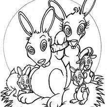 Conejos - Dibujos para Colorear y Pintar - Dibujos para colorear ANIMALES - Dibujos ANIMALES DE GRANJA para colorear - Colorear CONEJOS - Dibujos para colorear e imprimir CONEJOS GRATIS