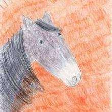 El caballo bajo el sol - Dibujar Dibujos - Dibujos de NIÑOS - Dibujos de ANIMALES - Dibujos de  animales por ORDENADOR