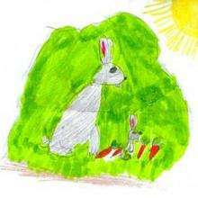 El conejo - Dibujar Dibujos - Dibujos de NIÑOS - Dibujos de ANIMALES - Dibujos de  animales por ORDENADOR