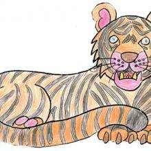 Ilustración : El tigre