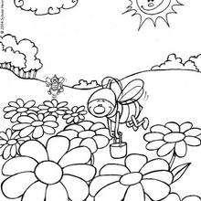 Las abejas - Dibujos para Colorear y Pintar - Dibujos infantiles para colorear - Colorear las 4 temporadas - Dibujos de la primavera para pintar