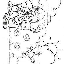 Dibujo para colorear conejos de pascua - Dibujos para Colorear y Pintar - Dibujos para colorear FIESTAS - Dibujos para colorear PASCUA - Dibujos para colorear CONEJOS DE PASCUA