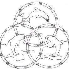 Mandala Delfines felices - Dibujos para Colorear y Pintar - Dibujos para colorear MANDALAS - Dibujos de MANDALAS DE ANIMALES para colorear