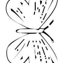 Dibujar y colorear mariposa morada - Dibujos para Colorear y Pintar - Dibujos para colorear ANIMALES - Dibujos INSECTOS para colorear - Dibujos para colorear MARIPOSAS - Colorear MARIPOSA MORADA