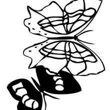 Colorear un dibujo de mariposa azul - Dibujos para Colorear y Pintar - Dibujos para colorear ANIMALES - Dibujos INSECTOS para colorear - Dibujos para colorear MARIPOSAS - Colorear MARIPOSA AZUL
