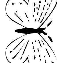 Dibujo de colorear de una mariposa azul  - Dibujos para Colorear y Pintar - Dibujos para colorear ANIMALES - Dibujos INSECTOS para colorear - Dibujos para colorear MARIPOSAS - Colorear MARIPOSA AZUL