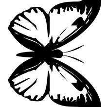 Dibujo para colorear una mariposa - Dibujos para Colorear y Pintar - Dibujos para colorear ANIMALES - Dibujos INSECTOS para colorear - Dibujos para colorear MARIPOSAS - Colorear MARIPOSA DE COLORES