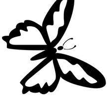 Mariposa morada sencilla para pintar - Dibujos para Colorear y Pintar - Dibujos para colorear ANIMALES - Dibujos INSECTOS para colorear - Dibujos para colorear MARIPOSAS - Colorear MARIPOSA MORADA