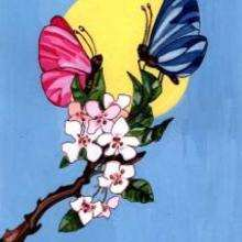Ilustración : Mariposas de primavera