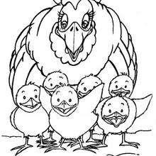 Gallina con sus pollitos - Dibujos para Colorear y Pintar - Dibujos para colorear ANIMALES - Dibujos ANIMALES DE GRANJA para colorear - Colorear GALLINAS
