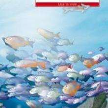 Remora a la deriva - Lecturas Infantiles - Libros INFANTILES Y JUVENILES - Libros INFANTILES - de 6 a 9 años