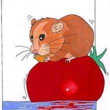 Ilustración : Ratón y tomate