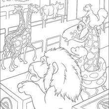 El zoo - Dibujos para Colorear y Pintar - Dibujos de PELICULAS colorear - Dibujos para colorear SALVAJE PELICULA - Dibujos para colorear e imprimir SALVAJE