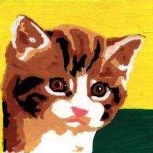 Ilustración : Dibujo de un Gato