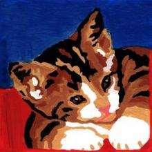 Gatito - Dibujar Dibujos - Dibujos de NIÑOS - Dibujos de ANIMALES - Dibujos de  animales por ORDENADOR