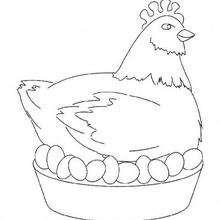 Dibujo para colorear : Gallina incubando Huevos